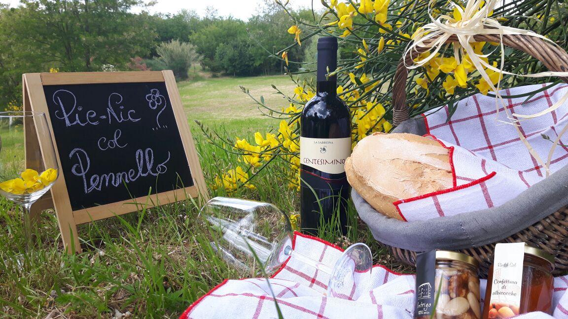 picnic-col-pennello